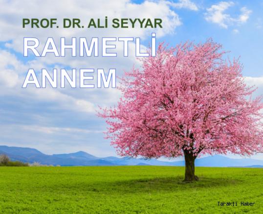 Prof.Dr.Ali Seyyar'ın Kaleminden